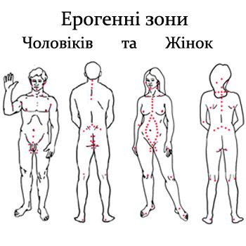 Эрогенные точки мужчины картинка